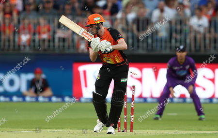 Wicket: Ashton Turner of the Scorchers is bowled by James Faulkner of the Hurricanes