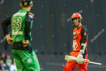 Tom Cooper of Melbourne Renegades looks at Nic Maddinson of Melbourne Stars as he walks off after being dismissed during the Big Bash League match between Melbourne Renegades and Melbourne Stars at the Marvel Stadium, Melbourne. Picture by Martin Keep