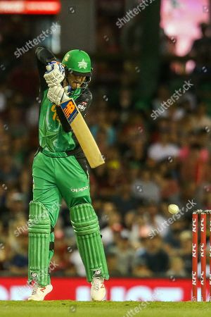 Nic Maddinson of Melbourne Stars plays a defensive stroke during the Big Bash League match between Melbourne Renegades and Melbourne Stars at the Marvel Stadium, Melbourne. Picture by Martin Keep