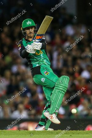 Nic Maddinson of Melbourne Stars bats during the Big Bash League match between Melbourne Renegades and Melbourne Stars at the Marvel Stadium, Melbourne. Picture by Martin Keep