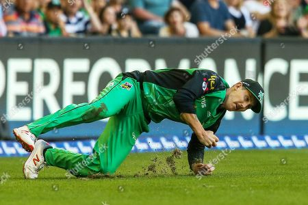 Nic Maddinson of Melbourne Stars dives to take a catch to dismiss Aaron Finch of Melbourne Renegades during the Big Bash League match between Melbourne Renegades and Melbourne Stars at the Marvel Stadium, Melbourne. Picture by Martin Keep