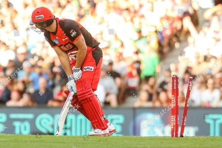 Editorial picture of Melbourne Renegades vs Melbourne Stars - 19 Jan 2019