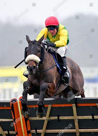 Horse Racing - 19 Jan 2019