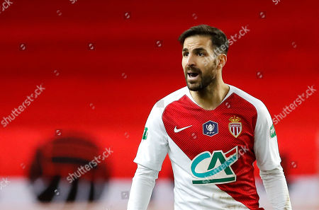 Cesc Fabregas of AS Monaco reacts during the French Cup round of 16 soccer match between AS Monaco and FC Metz at Stade Louis II, in Monaco, 22 January 2019.