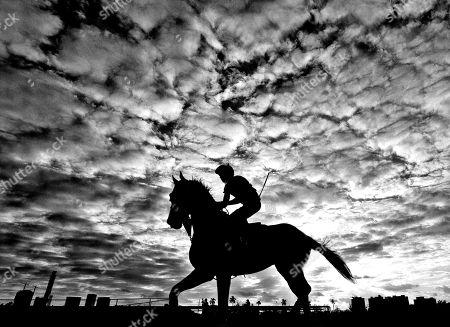 Horse Racing - 23 Jan 2019