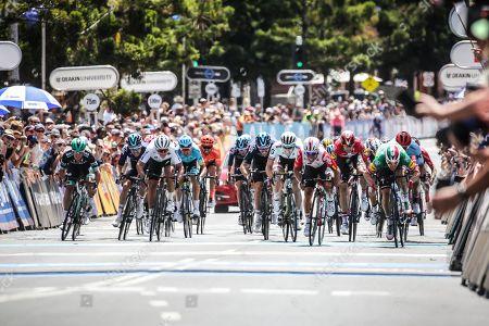 Elia VIVIANI (ITA) of DECEUNINCK - QUICK STEP (DQT) wins the 2019 Cadel Evans Great Ocean Road Elite Mens Race