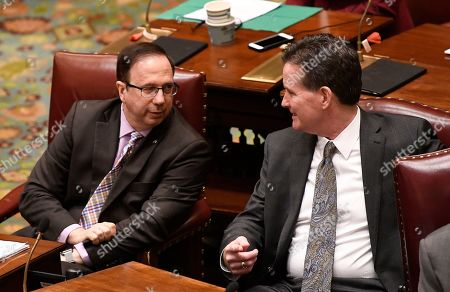 Senate Deputy Minority Leader Joseph Griffo, R-Utica, left, talks with Senate Minority Leader John Flanagan, R-Smithtown, as Senators explain their vote on the Child Victims Act in the Senate Chamber at the state Capitol, in Albany, N.Y