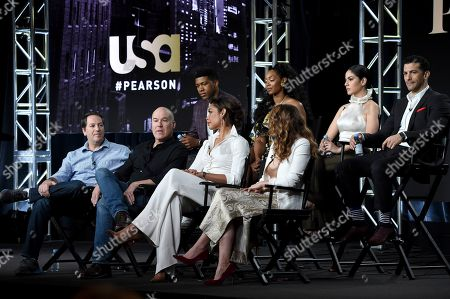 "Stock Picture of Aaron Korsh, Daniel Arkin, Gina Torres, Bethany Joy Lenz, Eli Goree, Chantel Riley, Isabel Arraiza, Simon Kassianides. Executive producer Aaron Korsh, from front row left, executive producer/showrunner Daniel Arkin, co-executive producer Gina Torres, Bethany Joy Lenz and from back row left, Eli Goree, Chantel Riley, Isabel Arraiza and Simon Kassianides participate in USA's ""Pearson"" panel during the NBCUniversal TCA Winter Press Tour, in Pasadena, Calif"