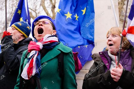 Opponents of Brexit demonstrate outside the Houses of Parliament in central London. In the Commons, on a day of significant parliamentary activity over Brexit, MPs voted down a cross-party amendment tabled by Labour Party MP Yvette Cooper and Conservative Party MP Nick Boles designed to substantially reduce the risk of a much-feared 'no-deal' exit from the EU. An amendment rejecting the principle of a no-deal exit was meanwhile approved, as was a government-backed amendment championed by Conservative Party MP Graham Brady calling for 'alternative arrangements' to take the place of the controversial Irish 'backstop' provision in the withdrawal agreement negotiated with the EU.