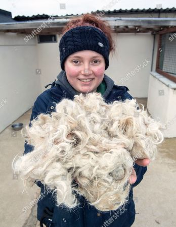Stock Photo of Rescue centre worker Alice Walker with the remains of Douglas's dirty coat.