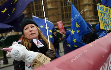 Pro EU campaigners rally outside of the Parliament in London, Britain, 31 January 2019. The House of Commons is set to vote on British Prime Minister Theresa May's Plan B for Brexit on 13 February.