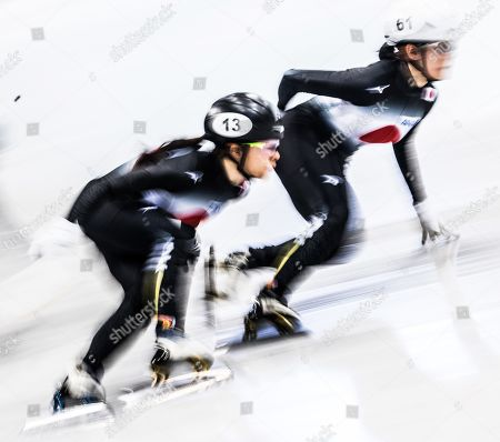 Editorial picture of ISU World Cup Short Track Speed Skating, Dresden, Germany - 01 Feb 2019