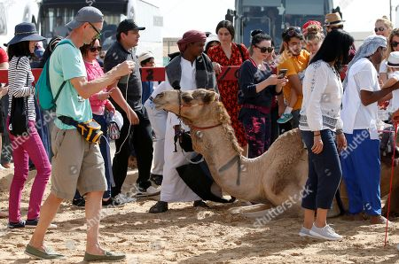 Tourists take pictures of camels during a camel race held as part of the Sultan Bin Zayed Heritage Festival in the desert at Sweihan, in Al-Ain, United Arab Emirates, 02 February 2019. The Sultan festival is part of efforts to revive and safeguard the age-old tradition of camel and saluki sports, which is considered an integral part of the UAE and Gulf heritage. The event features traditional camel races and camel beauty contests in addition to the traditional souq (a camel auction), saluki race and competitions for traditional handicrafts, the festival is under patronage of HH Sheikh Sultan bin Zayed Al Nahyan, the President's Representative and Chairman of the Emirates Heritage Club (EHC).
