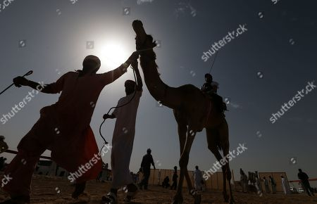 Stock Image of Camel jockeys prepare to compete during a camel race held as part of the Sultan Bin Zayed Heritage Festival in the desert at Sweihan, in Al-Ain, United Arab Emirates, 02 February 2019. The Sultan festival is part of efforts to revive and safeguard the age-old tradition of camel and saluki sports, which is considered an integral part of the UAE and Gulf heritage. The event features traditional camel races and camel beauty contests in addition to the traditional souq (a camel auction), saluki race and competitions for traditional handicrafts, the festival is under patronage of HH Sheikh Sultan bin Zayed Al Nahyan, the President's Representative and Chairman of the Emirates Heritage Club (EHC).
