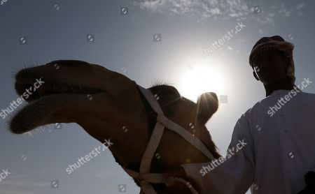 A Camel trainer waits with his camel to compete during a camel race held as part of the Sultan Bin Zayed Heritage Festival in the desert at Sweihan, in Al-Ain, United Arab Emirates, 02 February 2019. The Sultan festival is part of efforts to revive and safeguard the age-old tradition of camel and saluki sports, which is considered an integral part of the UAE and Gulf heritage. The event features traditional camel races and camel beauty contests in addition to the traditional souq (a camel auction), saluki race and competitions for traditional handicrafts, the festival is under patronage of HH Sheikh Sultan bin Zayed Al Nahyan, the President's Representative and Chairman of the Emirates Heritage Club (EHC).