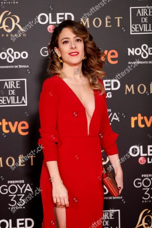 Editorial picture of 33rd Goya Awards in Seville, Spain - 02 Feb 2019
