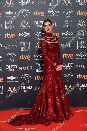 Belen Lopez poses at the red carpet of the 33rd Goya Awards, celebrated at the Conference Centre, in Seville, southern Spain, 02 February 2019. The awards are presented by the Spanish Film Academy.