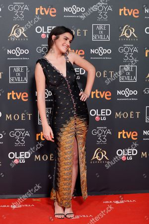 Amaia Romero poses at the red carpet of the 33rd Goya Awards, celebrated at the Conference Centre, in Seville, southern Spain, 02 February 2019. The awards are presented by the Spanish Film Academy.