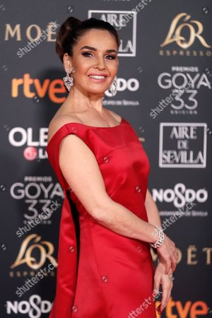 Editorial photo of 33rd Goya Awards in Seville, Spain - 02 Feb 2019
