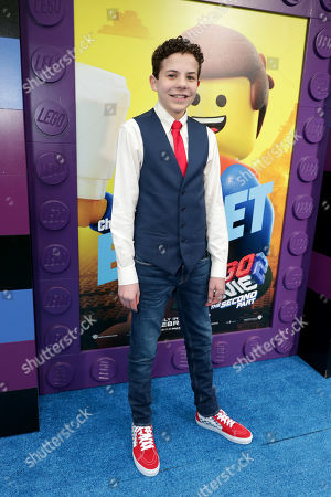 Editorial image of Warner Bros. Pictures film premiere of 'The Lego Movie 2: The Second Part' at Regency Village Theatre, Los Angeles, USA - 02 Feb 2019