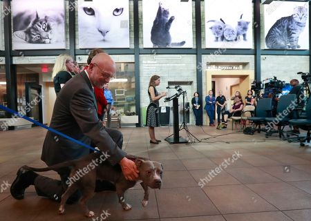 """Stock Image of Ted Deutch, Debbie Wasserman Schultz. Rep. Ted Deutch, D-Fla., left, pets Connie, a pit bull mix as Rep. Debbie Wasserman Schultz, D-Fla., center rear, speaks during a news conference at the Broward County Animal Care and Adoption Center, in Fort Lauderdale, Fla. Deutch and Wasserman Schultz spoke about the introduction of the """"Preventing Animal Cruelty and Torture (PACT) Act"""" to criminalize certain acts of animal cruelty"""