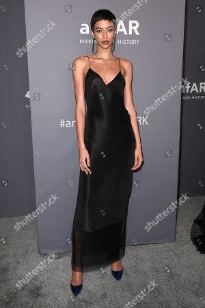 Editorial image of amfAR Gala New York 2019 - Arrivals, New York, USA - 06 Feb 2019