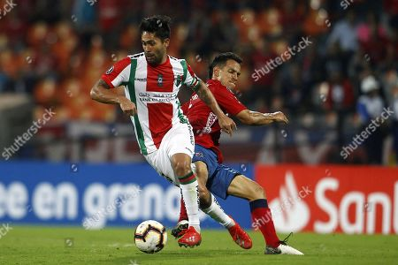 Stock Photo of Independiente Medellin's Diego Arias (R) vies for the ball against Palestino's Luis Jimenez (L) during a match of the Copa Libertadores between Independiente Medellin and Palestino at Atanasio Girardot stadium in Medellin, Colombia, 12 February 2019.