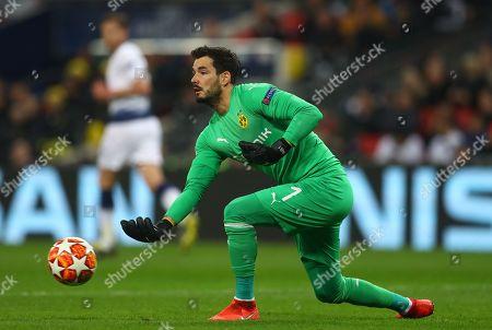Roman Burki of Borussia Dortmund