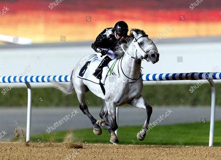 Horse Racing - 14 Feb 2019