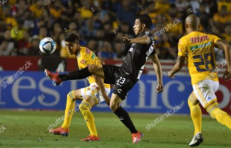 Tigres' Hugo Ayala (L) vies for the ball with Rayos de Necaxa's Angel Sepulveda (C) during a match on day seven of the Torneo Clausura 2019 at the University Stadium in Monterrey, Mexico, 16 February 2019.