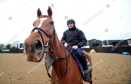 Horse Racing - 19 Feb 2019