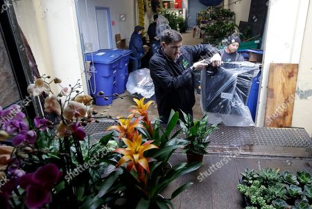 """Nick Haschka, owner of The Wright Gardner, center, and Jason Biting, operations associate, load plants onto a delivery truck in South San Francisco, Calif. As Haschka bought four small horticultural businesses over the past two years, he had to help his new employees navigate almost constant change. """"They've had to get used to a new owner, new management style, and many new processes and tools,"""" says Haschka"""
