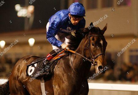Horse Racing - 21 Feb 2019