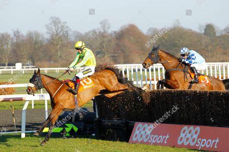 Editorial image of Horse Racing - 23 Feb 2019