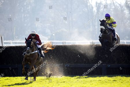 Whatswrongwithyou and Nico De Boinville win the NetBet Josh Gifford Memorial Novices' Chase at Fontwell from Amour De Nuit [yellow] and La Cavsa Nostra [brown].