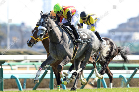 , Nakayama, Japan, Noche Blanca with Mirco Demuro up wins the Itako Tokubetsu at Nakayama racecourse.