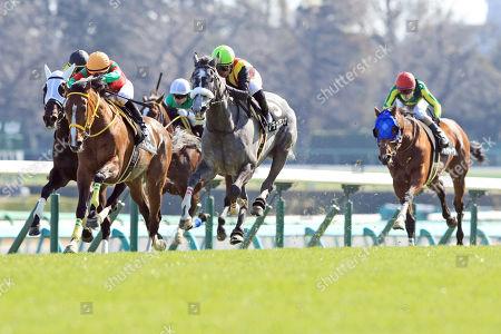 , Nakayama, Japan, Noche Blanca with Mirco Demuro (yellow cap) up wins the Itako Tokubetsu at Nakayama racecourse.