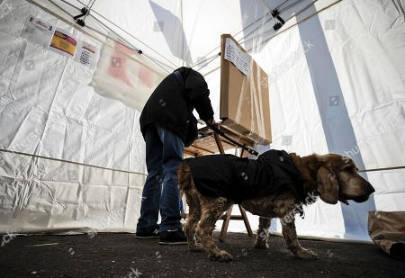 Aman is accompanied by his pet dog a he casts his vote in the primary elections for the national secreteriat of the Italian Democratic Party (Partito Democratico, PD), at a tent in Rome, Italy, 03 March 2019. PD politicians Maurizio Martina, who replaced Renzi following his resignation in 2018, Roberto Giachetti and Nicola Zingaretti are the main candidates for the Democratic Party's leadership election which was triggered by the party's general election defeat and Renzi's withdrawal in 2018.