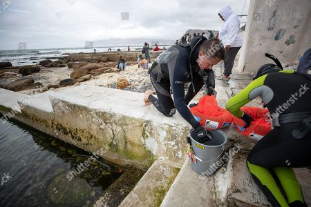 Stock Picture of Freedivers collate the plastic waste and debris picked up from Dalebrook tidal pool during a beach clean up in Kalk Bay, Cape Town, South Africa, 09 March 2019. The clean up was organised by Oceano Reddentes, a South African Non-Profit Organisation teaching ocean users to collect plastic to make Ecobricks which are then used to build homes for the homeless. Plastic pollution has reached epidemic proportion. According to an Ellen MacArthur Foundation report there will be more plastic in the ocean than fish by 2050. Africa is one of the most affected continents due to its extensive coastline and underdeveloped waste systems allowing plastic waste to easily enter the ocean.  The rapid growth of plastic production in the three biggest areas the European Union, China and the US particularly in single-use plastics is recognized as one of the greatest risks facing the environment and mankind. Efforts at recycling and plastic waste education are on the rise on the African continent with many programs being initiated by youth groups who view the problem as the biggest environmental challenge facing the new generation.