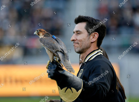 Stock Photo of Olly, a Red Naped Shaheen Falcon, is held by Falconer Nomar Garciaparra before her pregame flight for an MLS soccer match between Los Angeles FC and Portland Timbers in Los Angeles, . The Los Angeles FC won 4-1