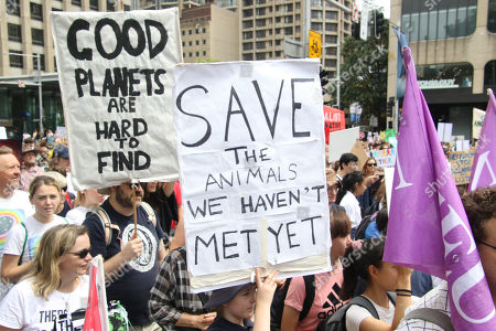 https://editorial01.shutterstock.com/wm-preview-450/10156354g/6584025c/schools-climate-change-march-sydney-australia-shutterstock-editorial-10156354g.jpg