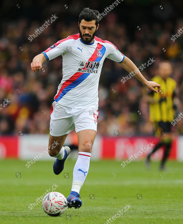 Stock Image of James Tomkins of Crystal Palace