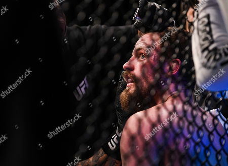 Editorial photo of UFC Fight Night at O2 Arena, London, UK - 16 Mar 2019