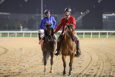 Thunder Snow (IRE) ridden by Christophe Soumillion wins the Dubai World Cup Sponsored By Emirates Airline 10F (Group 1), race 9, at Dubai World Cup, Meydan, Dubai.