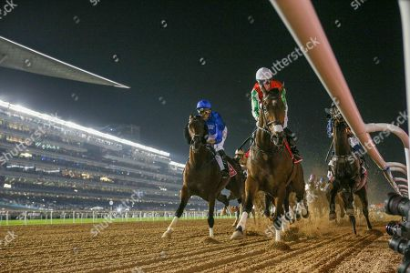 Stock Photo of Thunder Snow (IRE) (1st time round) ridden by Christophe Soumillion wins the Dubai World Cup Sponsored By Emirates Airline 10F (Group 1), race 9, at Dubai World Cup, Meydan, Dubai.