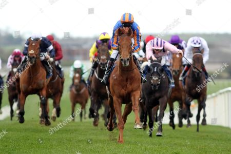 The Naas Racecourse Business Club Madrid Handicap. Donnacha O'Brien onboard Never No More comes home to win