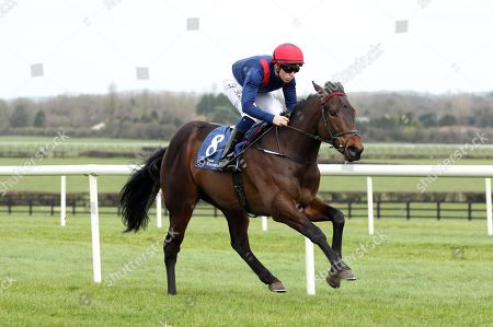 The Irish Stallion Farms EBF Maiden. Leigh Roche onboard Red Epaulette comes home to win