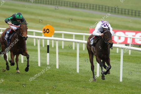 The Naas Racecourse Launches The 2019 Irish Flat Season Handicap. Kevin Manning onboard Solar Wave comes home to win