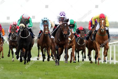 The Kildare Post & Kildare Now Maiden. Kevin Manning onboard Western Dawn (purple and white cap) comes home to win
