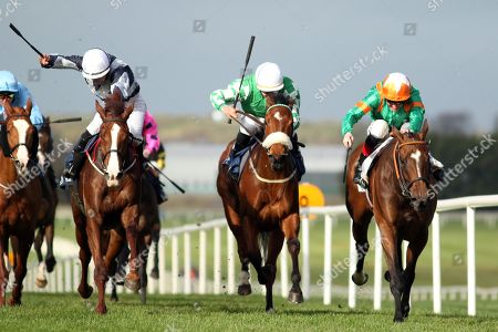 Stock Image of The Lodge Park Stud Irish EBF Park Express Stakes. Kevin Manning onboard Normandel (far right) comes home to win